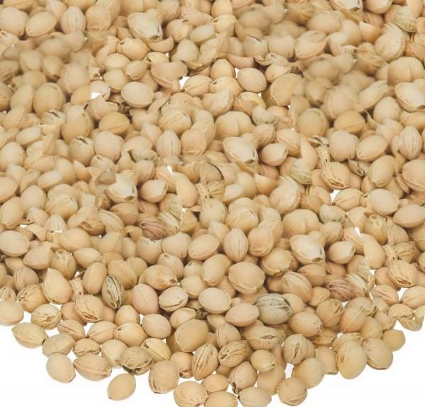 Kirschenkerne, 6 kg, idealer Füllstoff für Körnerkissen